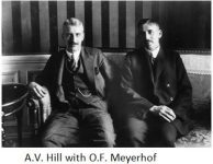 AV Hill and Meyerhof together