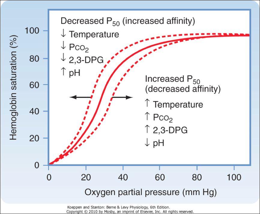 Hemoglobin desaturation curve