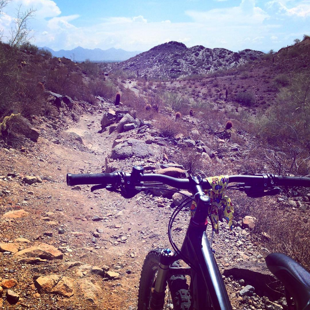 mountain biking phoenix mountains preserve